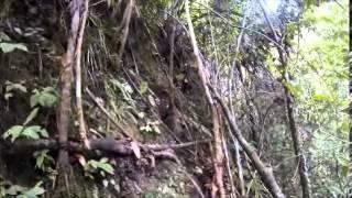 Caving in Pinagalaan, Bayugan, Agusan Del Sur  072013