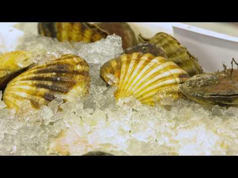 Get Into Water - Brixham Fish Market, Customer Feedback