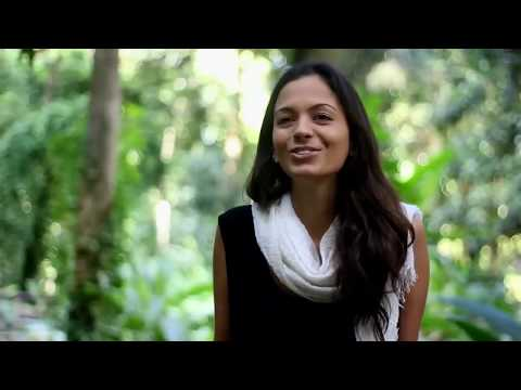 Ayahuasca – O chicote da alma
