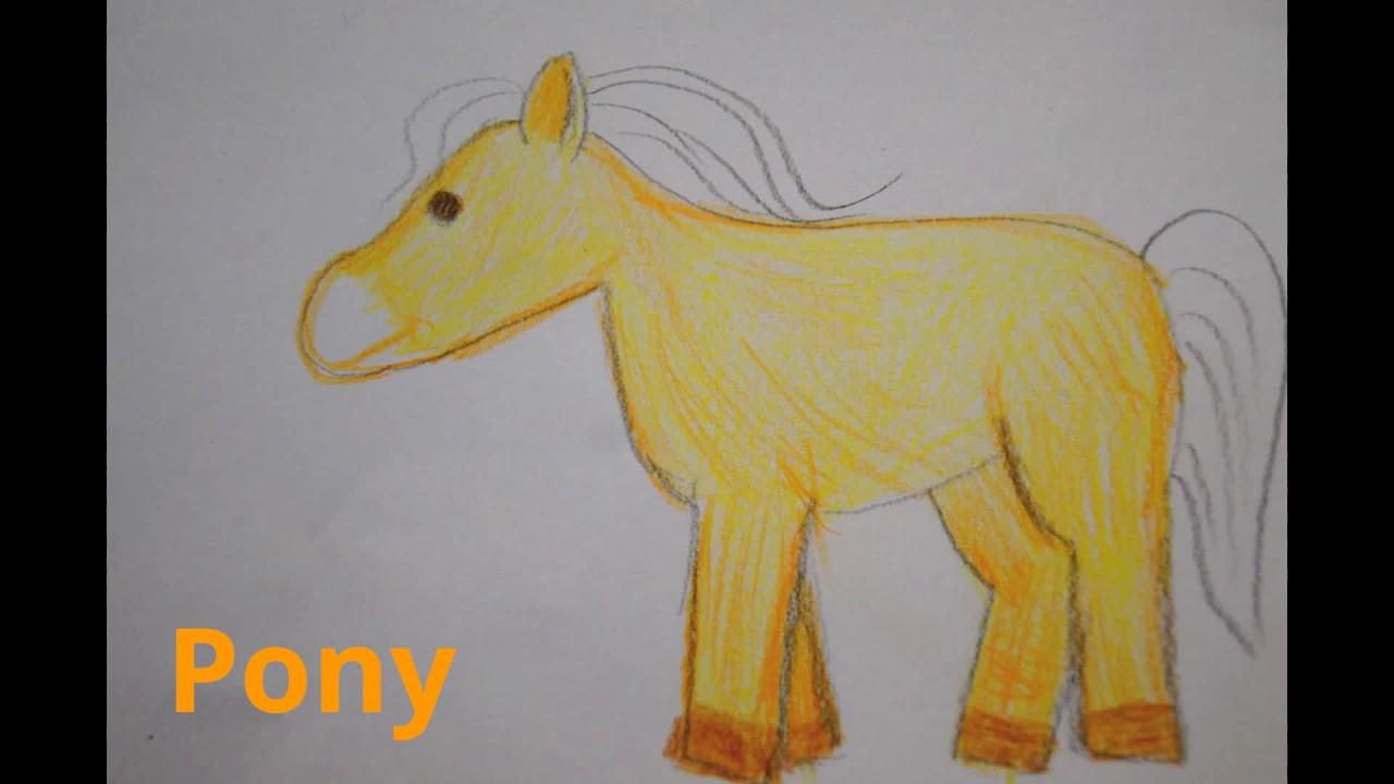 Pony Zeichnen Lernen Pferd Malen How To Draw A Pony Horse