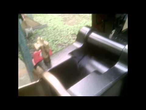 Maxim Nordenfelt Gun