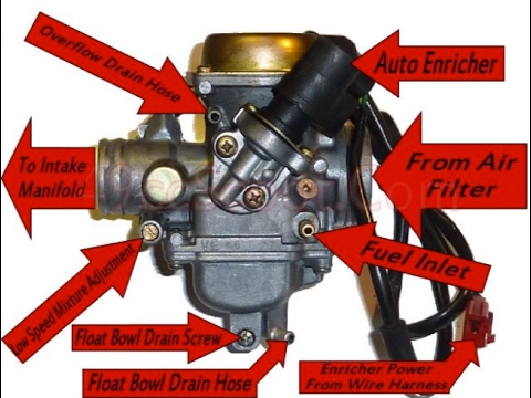 Taotao 150cc Scooter Wiring Diagram 2001 Ford Ranger Fuel Pump Quick Gy6 Carburetor Overview! - Youtube