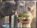 В Ростовском зоопарке дали имя новорожденному слоненку и открыли экзотариум