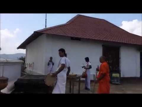 The Music, The Monkeys The Culture Of Sri Lanka, Women's Adventure Travel