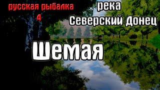 Русская рыбалка 4 рр4 rf4 река Северский донец Шемая