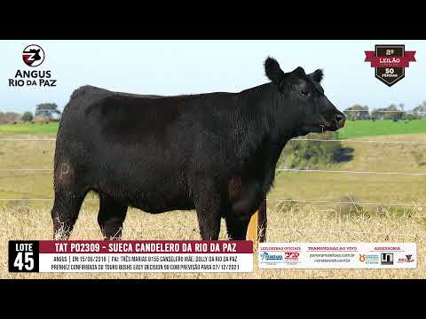 LOTE 45 SUECA CANDELERO DA RIO DA PAZ - - Prod. Agência e TV El Campo