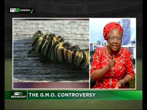 The G.M.O Controversy
