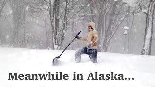 MEANWHILE IN ALASKA... - [Living in Alaska 65]