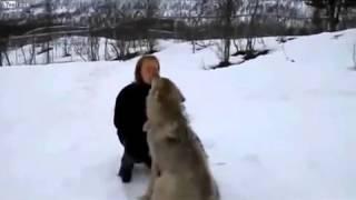 Посмотрите на этот ролик и дагадайтесь што животные самое предание существо которое любит больше вас