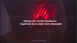 Shawn Mendes - 305 (Türkçe Çeviri)