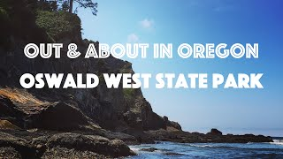 The Oregon Coast: Oswald West State Park