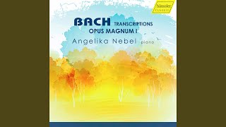 Willst du dein Herz mir schenken, BWV 518 (Arr. A. Nebel for Solo Piano)