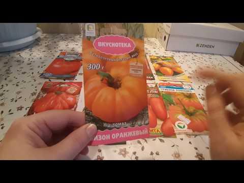 Среднеранние и среднеспелые семена крупных томатов.