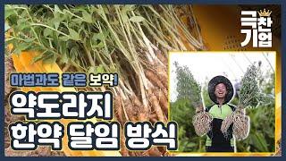 도라지~ 도라지~ 약~도라지♩ [극찬기업] 4-3 / …