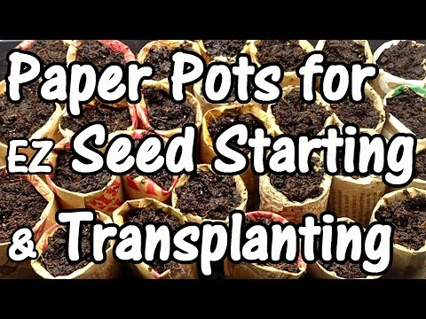 How to Make Free Paper Pots for EZ Seed Starting, Transplanting & Potting Up