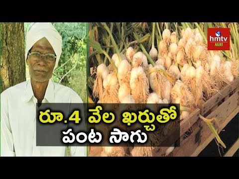 Garlic Farming Success Story | Natural Farming | hmtv Agri