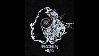 Sensorium Abyss - Is It Enough?