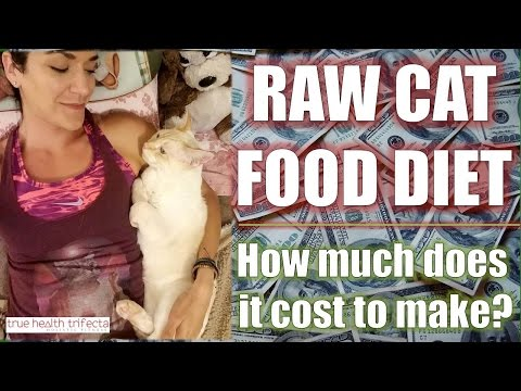 How much does it COST to make Raw Cat Food? - Healthy Cat Tips / Homemade Cat Food