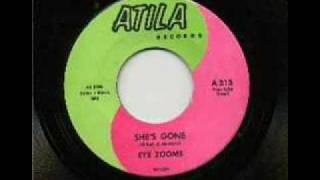 The Eye Zooms - She´s Gone (1966)