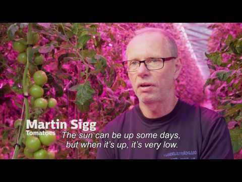 More climate control with LED - Martin Sigg, Finland (English subtitles)