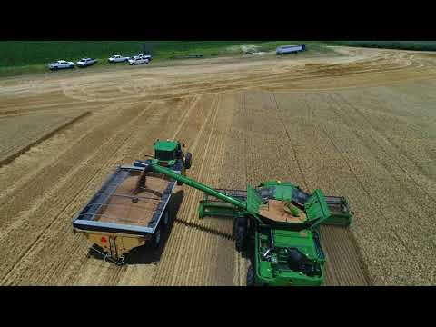 Wheat Harvest 2018
