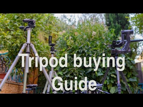 LensVid Exclusive: The Ultimate Tripod Buying Guide
