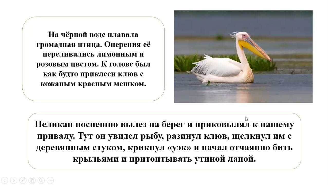 Русский язык  3 класс Урок 125