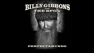 Billy Gibbons: Hombre Sin Nombre