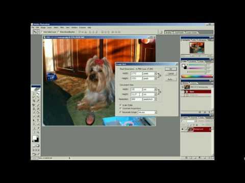 Создаем реалистичную печать в фотошоп