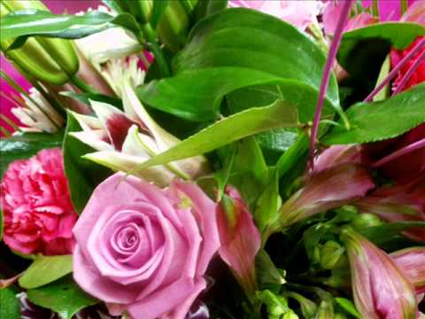 Carlow Florist - For All Your Floral Requirements - Carlow, Ireland