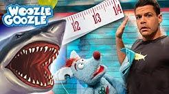Welche Haie gibt es? l WOOZLE GOOZLE