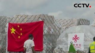 [中国新闻] 中非携手抗疫 诠释命运共同体深刻内涵   CCTV中文国际