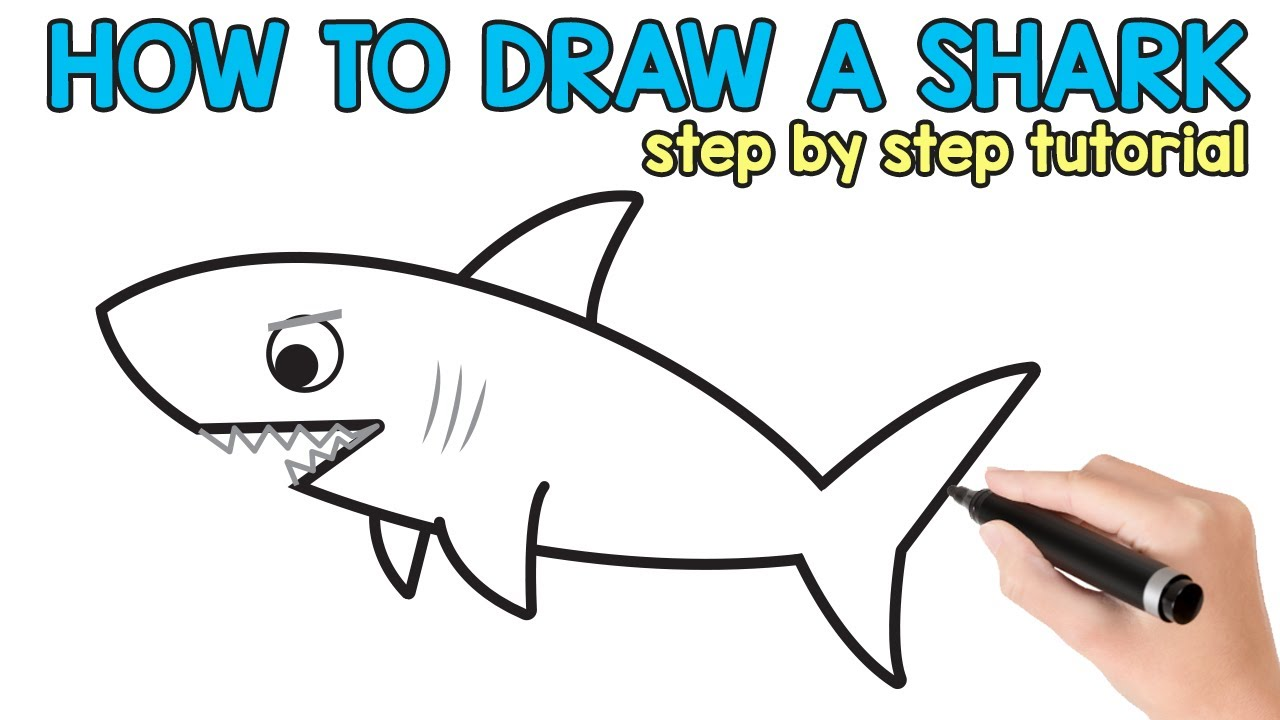 How To Draw A Shark Step By Step Tutorial With Free Printable