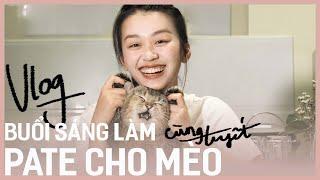 Hello Cô Tuyết | VĮog Buổi Sáng Làm Pąte Cнo Mèo DÏY Homęmadę Cąt Food