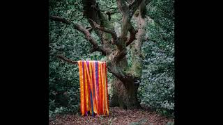 James Holden & The Animal Spirits - Go Gladly Into The Earth