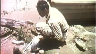 Bolivien Reise 1961 (3 von 3)