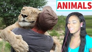 Wild Animals Showing Love to Humans