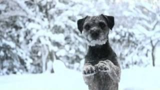 Mira & Rut - Amazing Winter Tricks!