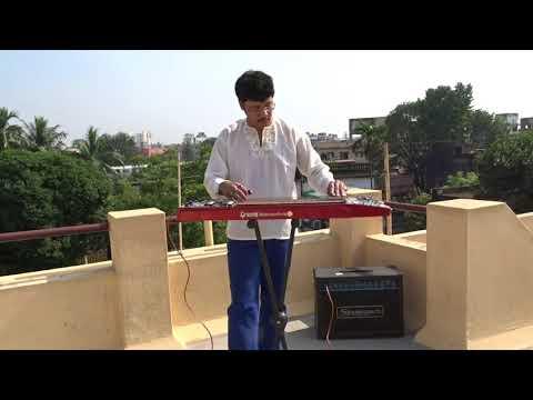 তুমি রবে নীরবে হৃদয় মমো Tumi Robe Nirobe - Instrumental Electric Steel Guitar By Pramit Das