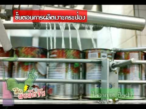 โอ๊ย!สงสัยจัง โรงงานผลไม้กระป๋อง How to make Canned fruit