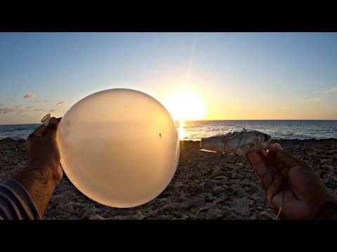 #outdoors #sport Fishing With Balloons -- Sunset Session ||Ep69