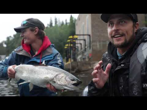 Fishing A Lake Superior Tributary For King Salmon!