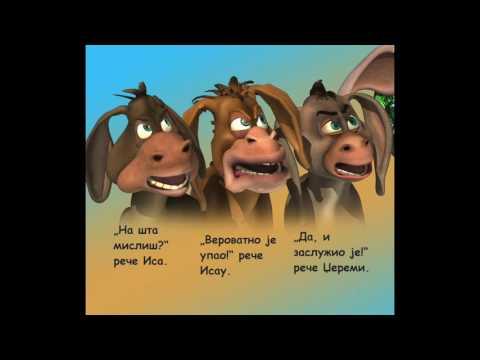 Serbian Donkey Ollie