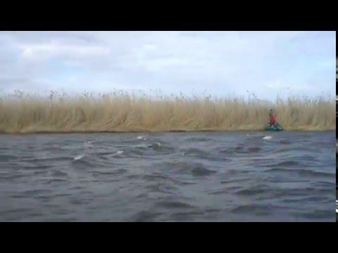 Астраханская область Камызякский район, рыбалим понемногу