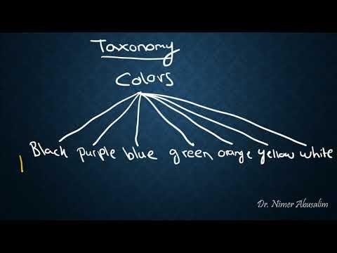 SEMANTICS-18: Sense Relations (Taxonomy & Hyponymy)
