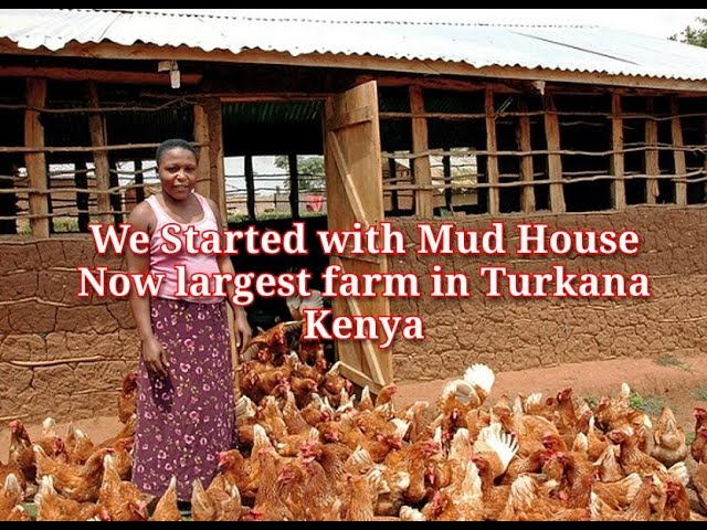 WE STARTED WITH A MUD HOUSE NOW WE ARE THE LARGEST FARM IN TURKANA & How to make Chicken Feeds