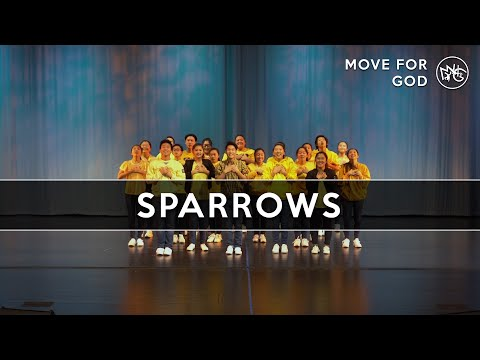 Sparrows - Jason Gray | M4G (Move For God)