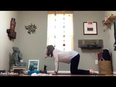 Vinyasa Yoga with Patti - 45 Minutes