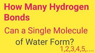 How Many Hydrogen Bond Can a Single Water Molecule Form?||Hydrogen Bond in Water(H2O)