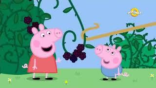 Purcelusa Peppa S3E46 in romana Cartoon KIDS Tufa de mure